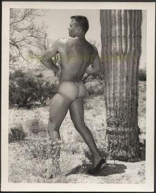 butt-desert
